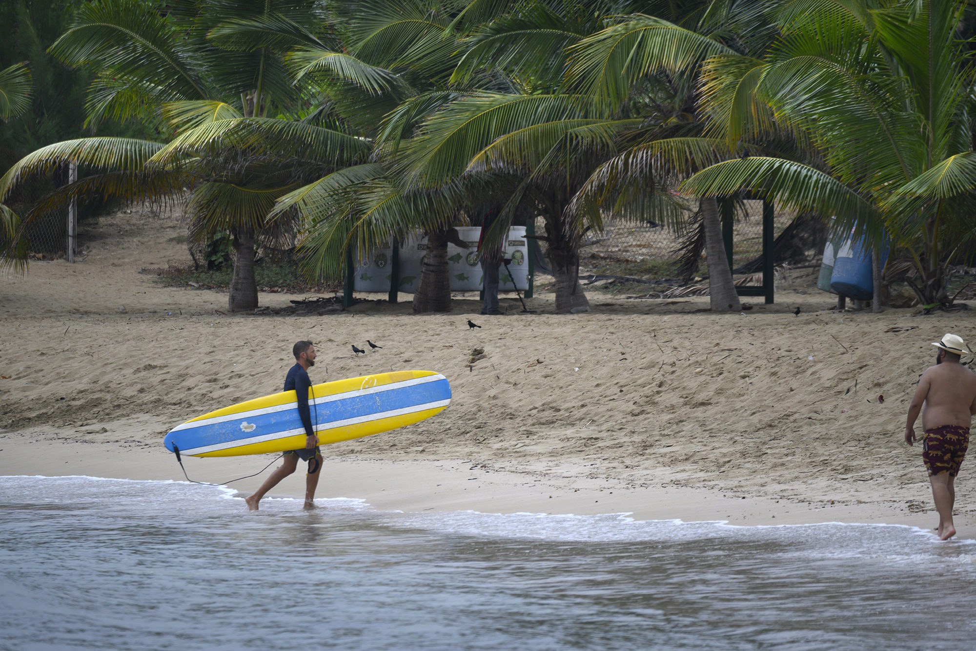 Jan Enderslev, from Montreal, comes ashore after surfing at Jobos Beach. Photo by Erin Johnson